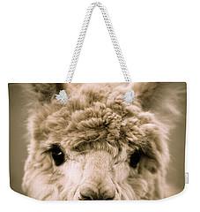 Sweet Alpaca Weekender Tote Bag by Shane Holsclaw
