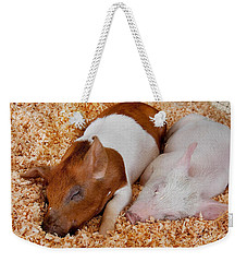 Sweet Piglets Nap Art Prints Weekender Tote Bag