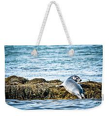 Sweet Seal Weekender Tote Bag by Cheryl Baxter
