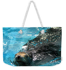 Weekender Tote Bag featuring the photograph Swimming Sea Lion by Kristine Merc