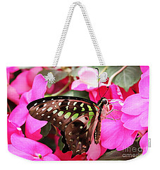 Tailed Jay Butterfly #4 Weekender Tote Bag