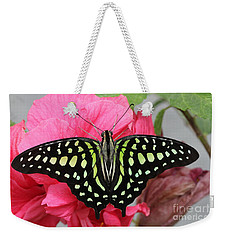 Weekender Tote Bag featuring the photograph Tailed Jay Butterfly #6 by Judy Whitton