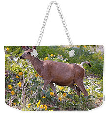 Weekender Tote Bag featuring the photograph Taking A Stroll In The Country by Athena Mckinzie