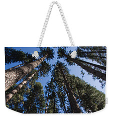 Talls Trees Yosemite National Park Weekender Tote Bag