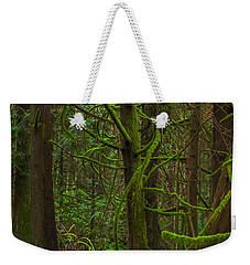 Weekender Tote Bag featuring the photograph Tangled Forest by Jacqui Boonstra