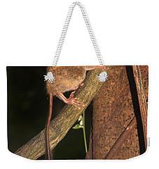 Tarsius Tarsier  Weekender Tote Bag by Sergey Lukashin