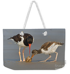 Teaching The Young Weekender Tote Bag by Jerry Fornarotto