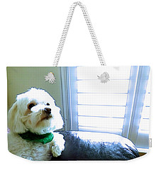Teddy Weekender Tote Bag by Robyn King
