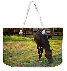 Weekender Tote Bag featuring the photograph Tender Spring Grass by Kristi Swift