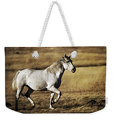 Weekender Tote Bag featuring the photograph That Golden Hour D3550 by Wes and Dotty Weber