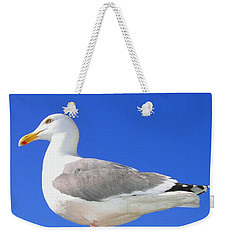 Weekender Tote Bag featuring the photograph The Admiral by Will Borden
