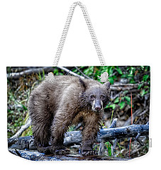 Weekender Tote Bag featuring the photograph The Balance Beam by Jim Thompson