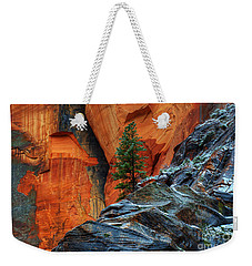 The Beauty Of Sandstone Zion Weekender Tote Bag by Bob Christopher