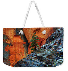 The Beauty Of Sandstone Zion Weekender Tote Bag