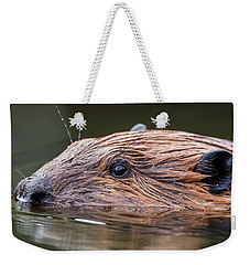 The Beaver Square Weekender Tote Bag