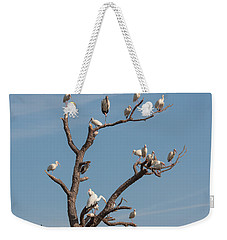 Weekender Tote Bag featuring the photograph The Bird Tree by John M Bailey