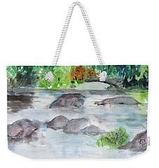 The Bog On Tupper Lake Weekender Tote Bag