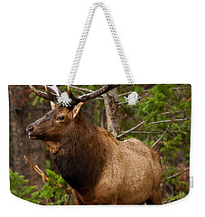 Weekender Tote Bag featuring the photograph The Bull Elk by Steven Reed