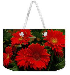 Gerbera Daisies Red Weekender Tote Bag