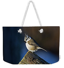 The Crested Tit In The Sun Weekender Tote Bag