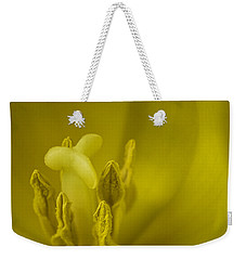 Weekender Tote Bag featuring the photograph The Dance by Lucinda Walter