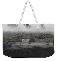 Weekender Tote Bag featuring the photograph The Dream Cow Of Mourning by Brian Boyle