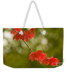 The Essence Of Autumn Weekender Tote Bag