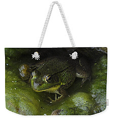 The Frog Weekender Tote Bag
