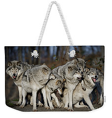 Weekender Tote Bag featuring the photograph The Gang by Wolves Only