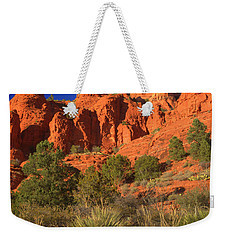 The Glory Of The Desert Red Rocks 1 Weekender Tote Bag