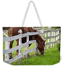 The Grass Is Always Greener Weekender Tote Bag
