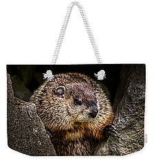 The Groundhog Weekender Tote Bag by Bob Orsillo