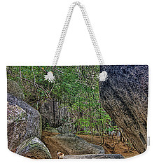 Weekender Tote Bag featuring the photograph The Guide by Olga Hamilton
