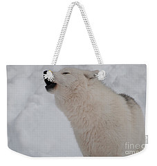 Weekender Tote Bag featuring the photograph The Howler by Bianca Nadeau