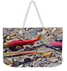 Weekender Tote Bag featuring the photograph The Interloper by Jim Thompson