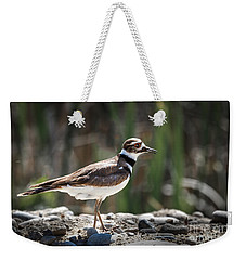 The Killdeer Weekender Tote Bag by Robert Bales