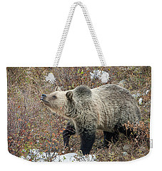 Weekender Tote Bag featuring the photograph The Last Berry by Jack Bell