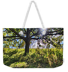 Weekender Tote Bag featuring the photograph The Learning Tree by Daniel Sheldon