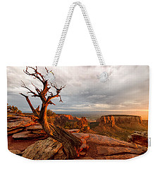 The Light On The Crooked Old Tree Weekender Tote Bag by Ronda Kimbrow