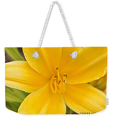 Weekender Tote Bag featuring the photograph The Lily From Kentucky by Verana Stark