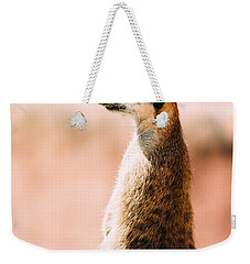 The Lonely Meerkat Weekender Tote Bag by Pati Photography