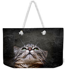 Weekender Tote Bag featuring the photograph The Look by Annie Snel