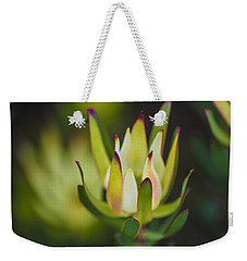 Weekender Tote Bag featuring the photograph The Magic Of Nature  by Naomi Burgess