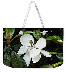 The Magnolia Bloom  Weekender Tote Bag by James C Thomas