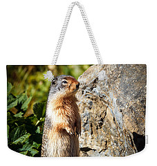 The Marmot Weekender Tote Bag by Robert Bales