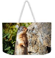 The Marmot Weekender Tote Bag by Robert Bales