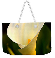 Weekender Tote Bag featuring the photograph The Morning Trumpets by Clayton Bruster