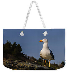 Weekender Tote Bag featuring the photograph The Observer by Mark Myhaver