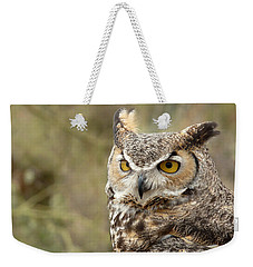 Weekender Tote Bag featuring the photograph The Owl by Lucinda Walter