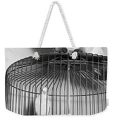 The Parakeet And The Cat Weekender Tote Bag by Underwood Archives